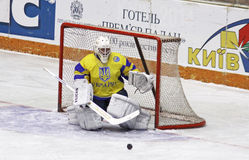 Goalkeeper Igor Karpenko of Ukraine Stock Images