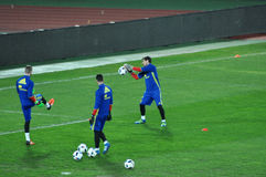 Goalkeeper of Spain, Iker Casillas during the training session Royalty Free Stock Photo
