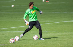 Goalkeeper Yann Sommer in dress of Borussia Monchengladbach Royalty Free Stock Image