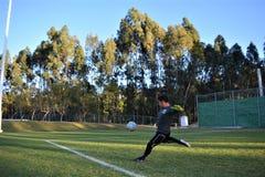 Goalkeeper7 Stock Photography