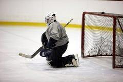 Goaltender royalty-vrije stock afbeeldingen