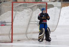 Goaltender of Dynamo Akhmerov Anton Stock Photo