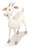Goat. Illustration of a goat on a white background Royalty Free Stock Images