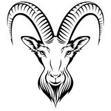 Goat. Stylizing Goats head isolated on white. Black and white  illustration Royalty Free Stock Photography