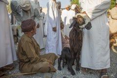 Goat auction of Nizwa Stock Images