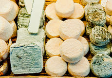 Goat Cheese. A variety of French goat cheeses on display Stock Images