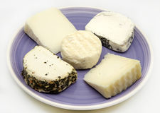 Goat cheese Stock Images