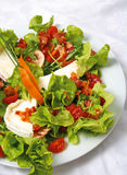 Goat cheese and bacon salad Royalty Free Stock Photos