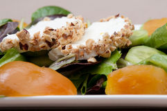 Goat cheese and beet salad Royalty Free Stock Photography