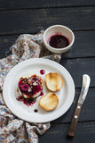 Goat cheese with berry sauce, balsamic vinegar and nuts on a white plate Stock Photography