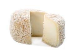 Goat cheese crottin de chavignol Stock Images