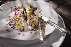Goat cheese with edible flowers Stock Photography
