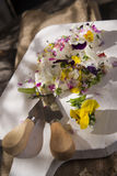 Goat cheese with edible flowers Royalty Free Stock Photos