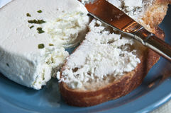 Goat cheese with fresh herbs and bread Royalty Free Stock Photo