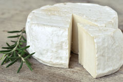 Goat cheese Stock Photography