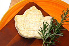 Goat cheese and herb Royalty Free Stock Images