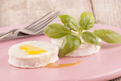 Goat cheese with olive oil and basil Royalty Free Stock Image