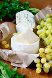 Goat cheese, parmesan, brie and Camembert Royalty Free Stock Image