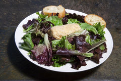 Goat Cheese Salad Stock Photography