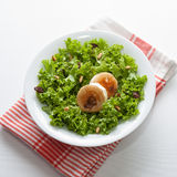 Goat cheese salad Stock Images
