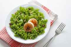 Goat cheese salad Royalty Free Stock Image