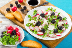 Goat cheese salad with parsley, blackberry, radish,  top view Royalty Free Stock Image