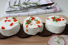 Goat cheese taler Royalty Free Stock Images