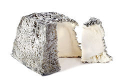 Goat cheese Valencay Stock Photography