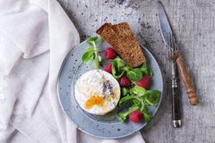 Goat Cheese With Honey And Raspberries Stock Photography