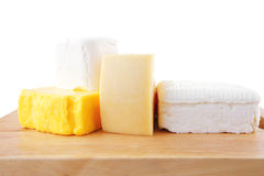 Goat cheeses and yellow Stock Image