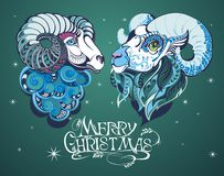 Goat 2015. Christmas background with decorative sheep Stock Photos