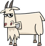 Goat farm animal cartoon Stock Images