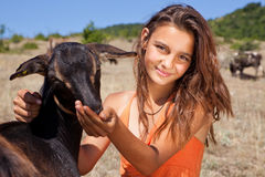 Goat feeding. Young cattle girl feeding goats in the Bulgarian mountains Stock Photos