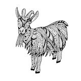 Goat Hand drawn sketched vector illustration. Doodle graphic with ornate pattern. Design  on white Royalty Free Stock Image