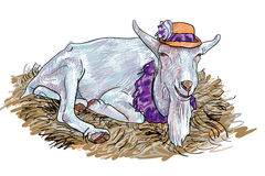 The goat on haystack Royalty Free Stock Photos