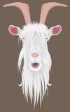 Goat head Stock Photos