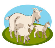 Goat and her kids Royalty Free Stock Image