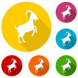 Goat icon. Goat stickers set, vector icon vector illustration