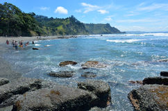 Goat Island New Zealand Royalty Free Stock Photo