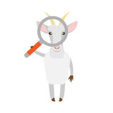 Goat with magnifier Stock Images