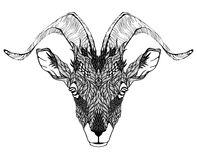 Goat Mascot Head tattoo. psychedelic Royalty Free Stock Photo