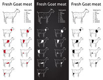 Goat meat cuts scheme set. Set of scheme cuts of fresh goat - cuts elements on blackboard Royalty Free Stock Photo