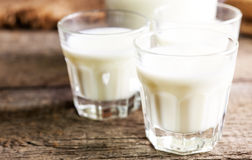Goat milk in glasses, vintage wooden background, selective focus Royalty Free Stock Images