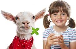 goat milk Stock Photos