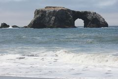 Goat Rock Beach Is Located Between Goat Rock Point And The Russian River Along The Sonoma County Shore Near The Town Of Jenner. Royalty Free Stock Image