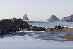 Goat Rock Beach - northwestern Sonoma County, California, is the mouth of the Russian River. And the southern end of this crescent shaped expanse is the royalty free stock photos