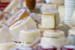 Goat and sheep cheeses selection. Stock Photography