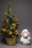 Goat or sheep with fir tree Royalty Free Stock Images