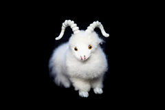 Goat or sheep the symbol 2015 year stock photos