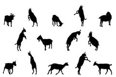 Goat silhouettes Royalty Free Stock Photos
